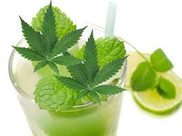 Marijuana Mojitos