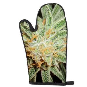 cannabis_sativa_bud_oven_mitt