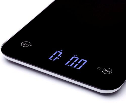 best kitchen scale best design of ctvnewsonline com